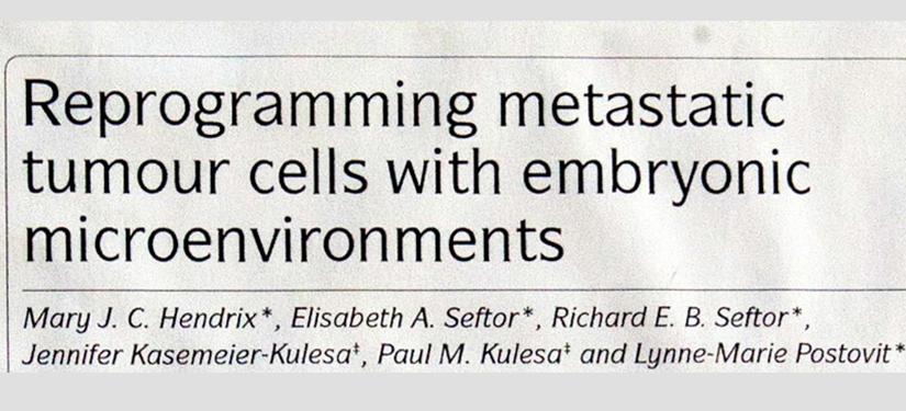 La riprogrammazione delle cellule metastatiche di tumori del microambiente embrionale