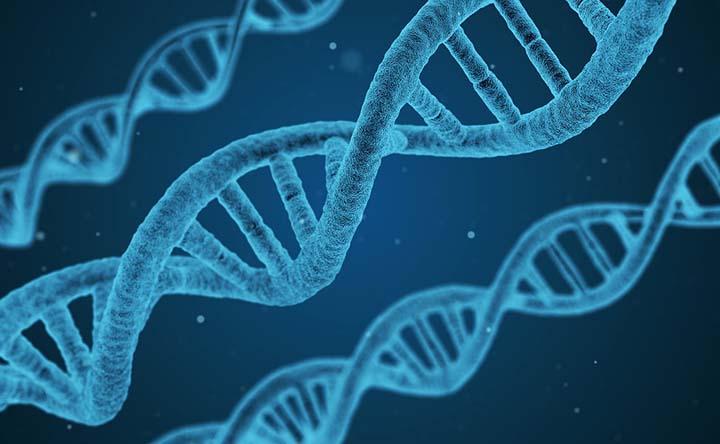 Lo strumento che capisce se il gene è cancerogeno