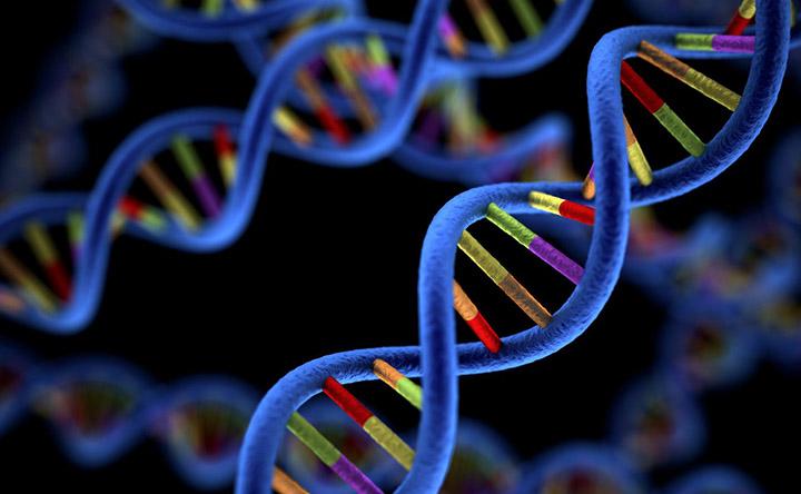 Tumore al seno: un nuovo test genetico per individuare la malattia e evitare la chemioterapia