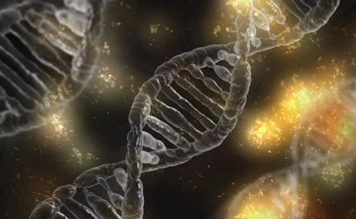 Tumore al pancreas: un nuovo modo per indurre la morte delle cellule tumorali