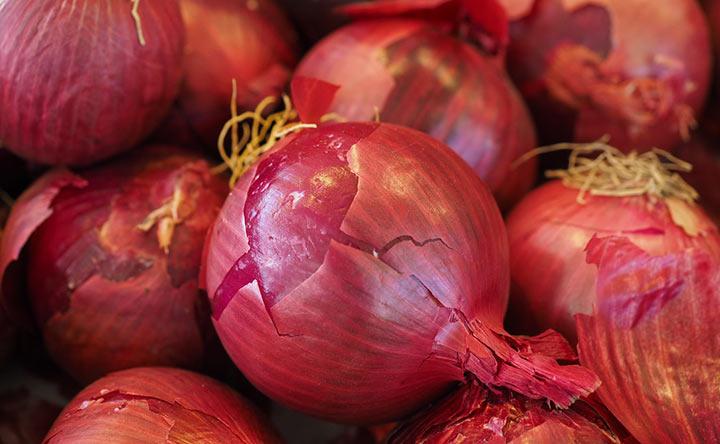 Le cipolle rosse contengono un composto anti-cancro
