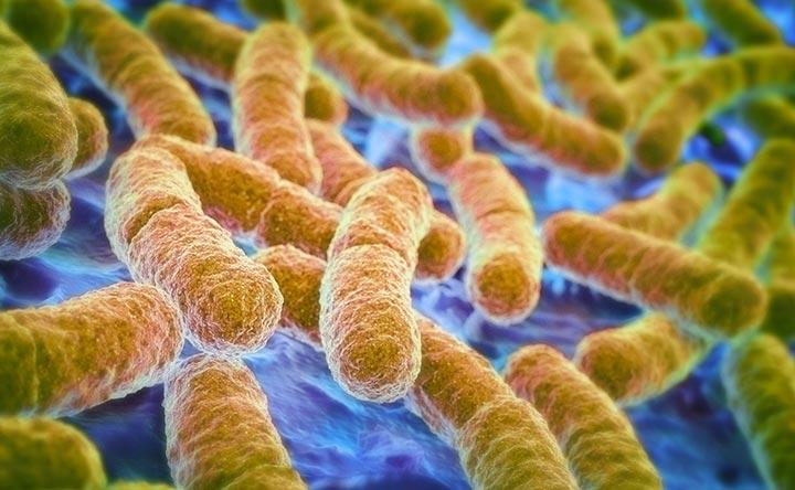 Cancro all'intestino: bisogna stare attenti al microbioma