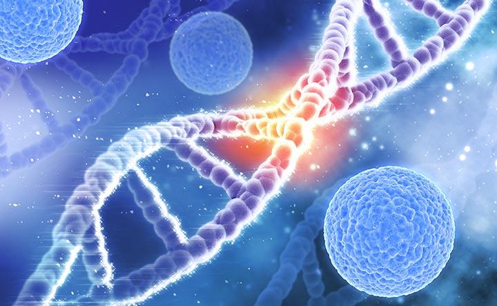 Come il corpo può individuare i segni di cancro precoce?