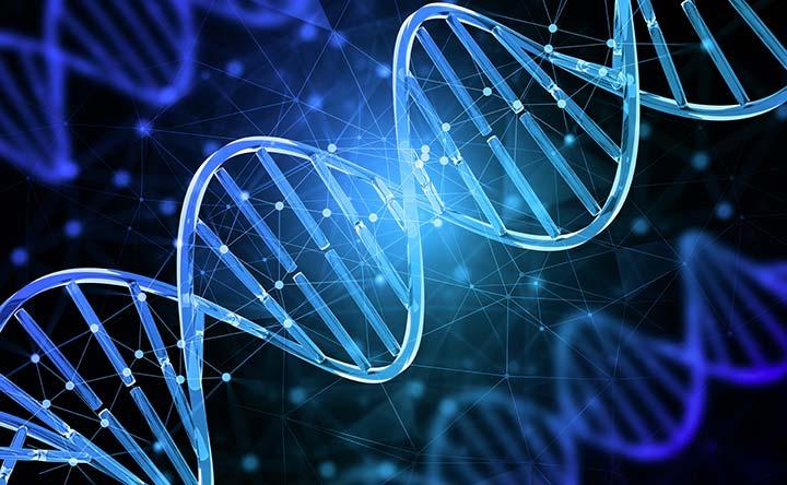 Tumori: scoperto il ruolo di due geni nella diagnosi