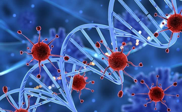 Scoperto un meccanismo complesso di soppressione immunitaria sfruttato dai tumori