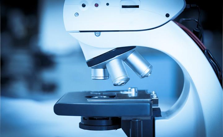 C'è un collegamento sistema immunitario e insorgenza di cancro