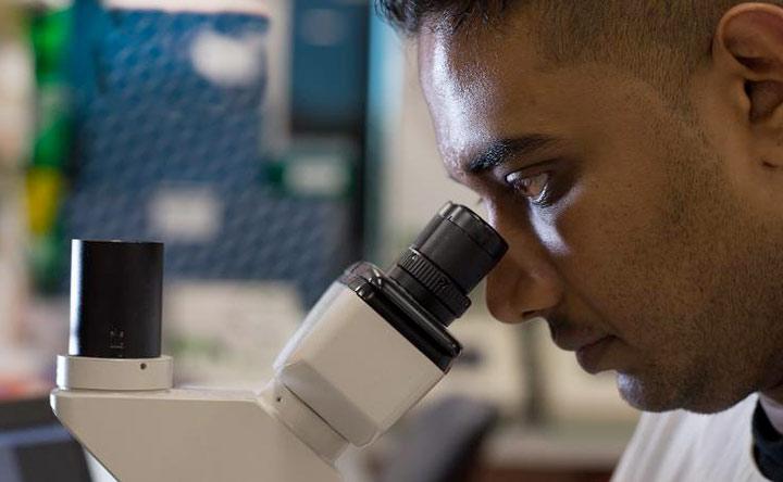 Prevedere la probabile diffusione dei tumori rari con un semplice test
