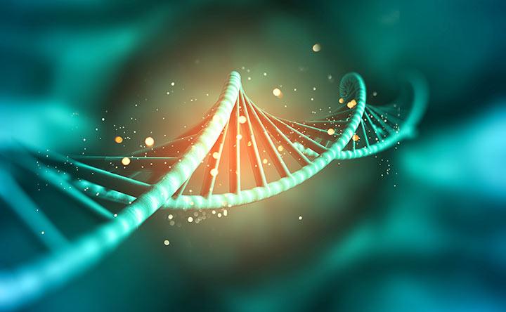cancro al seno proteine epigenetiche