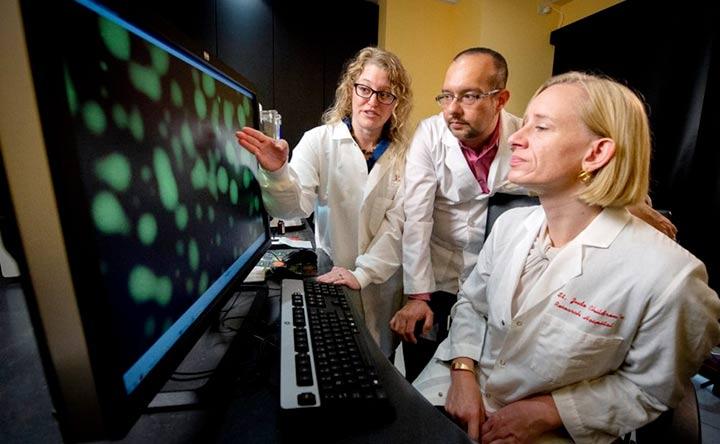 Le mutazioni nel gene SPOP possono portare al cancro (interrompendo la fase liquida)