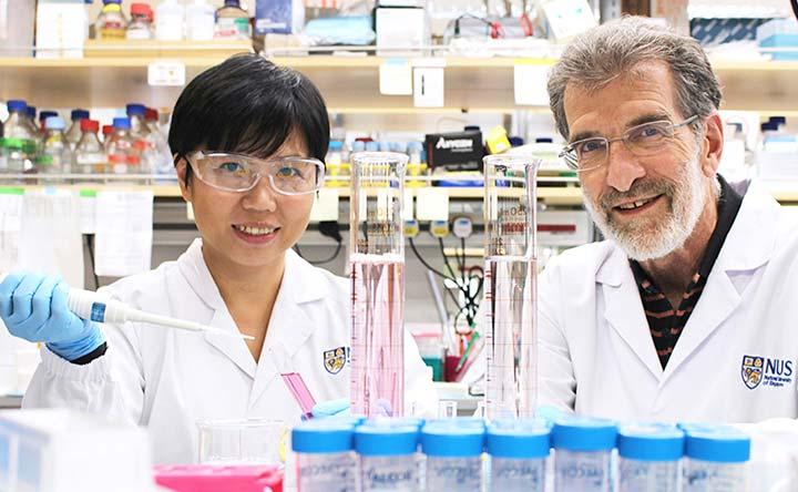 Nuovi biomarcatori predicono l'esito dell'immunoterapia