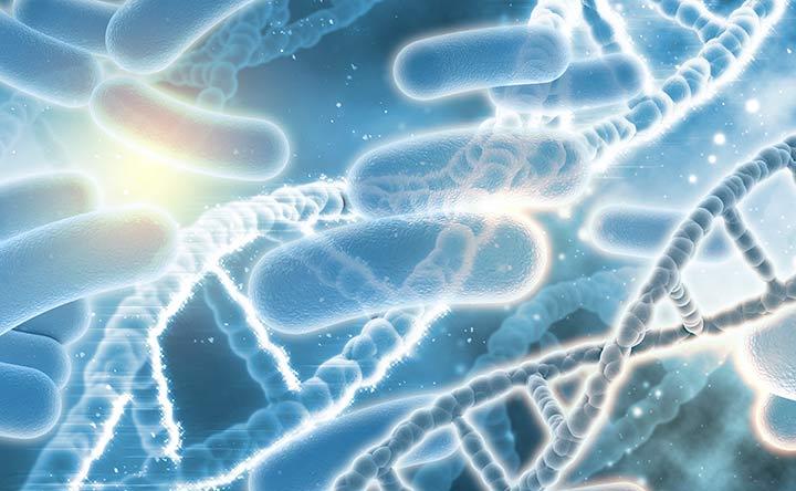 Batteri intestinali e cancro: importante legame