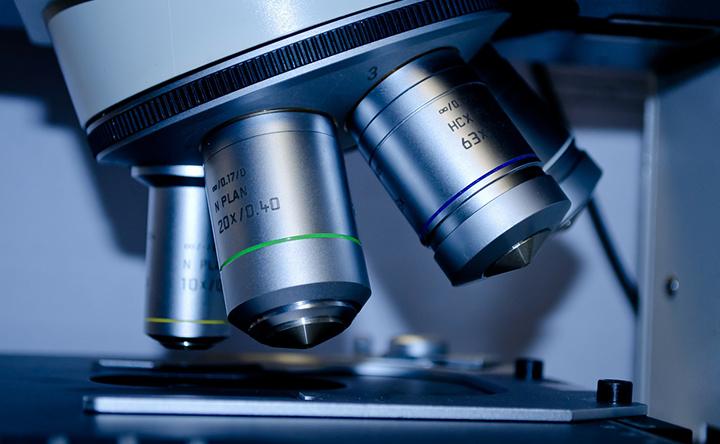 Metastasi: scoperto il ruolo chiave di una proteina