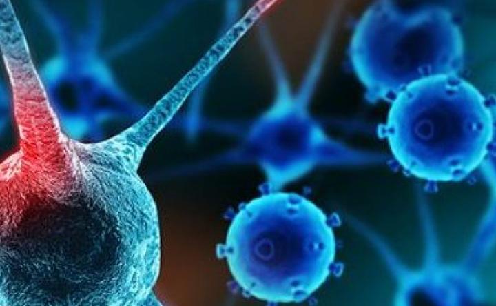 Somministrazione di farmaci antitumorali con campi magnetici per aumentare l'efficacia e ridurre gli effetti collaterali
