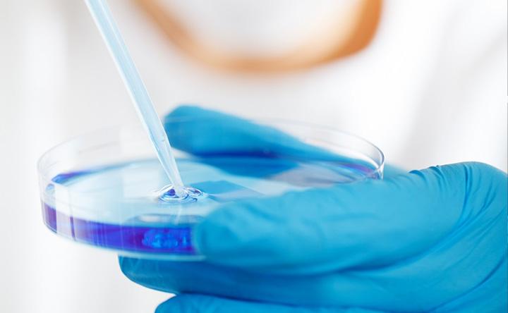Perchè alcune cellule tumorali sopravvivono ai trattamenti oncologici?
